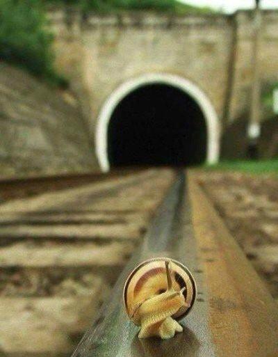 前面的路还很远,你可能会哭,但是一定要走下去,一定!