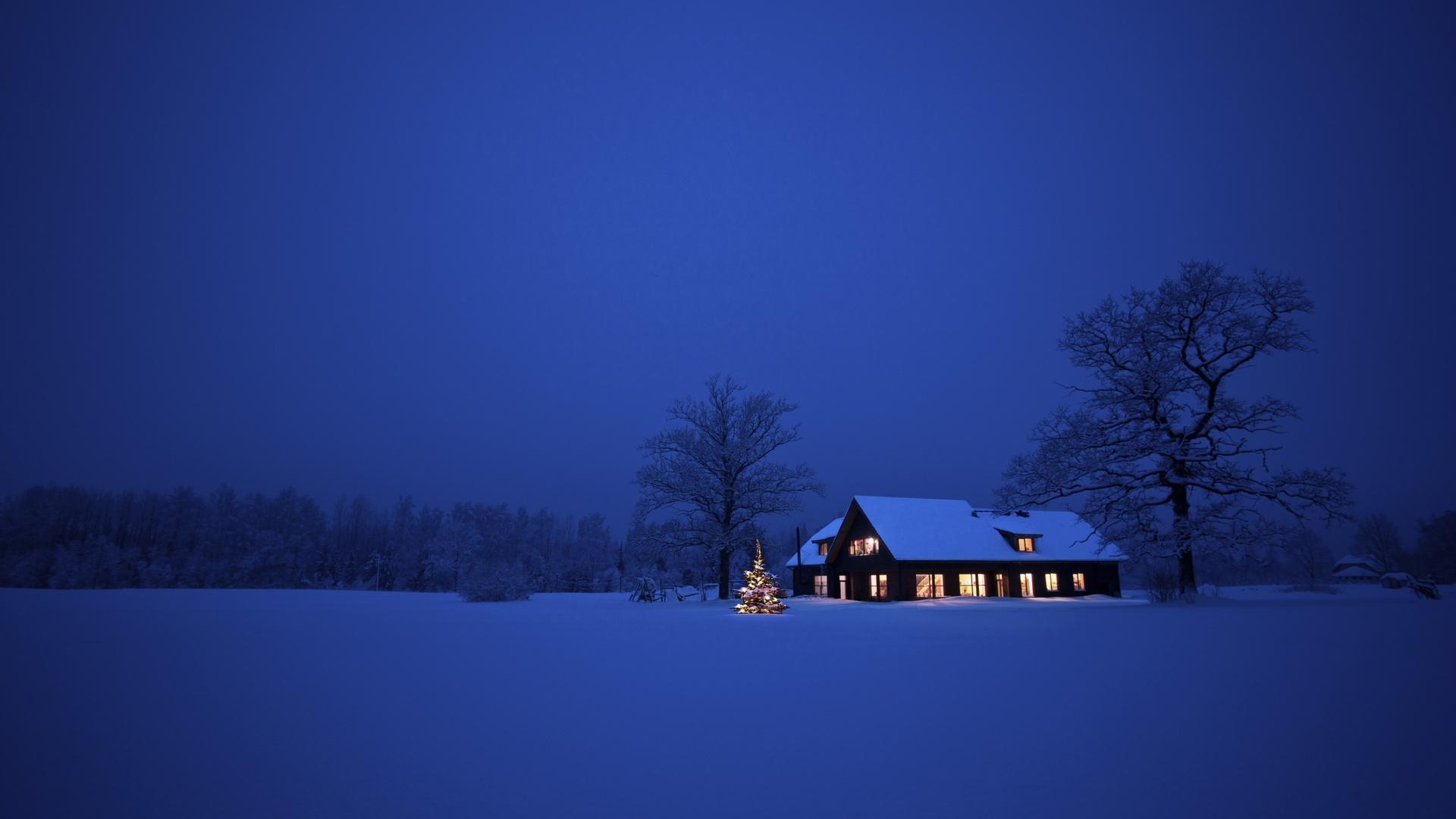 冬天夜晚飘雪梦幻图片:冬天下雪夜晚图片
