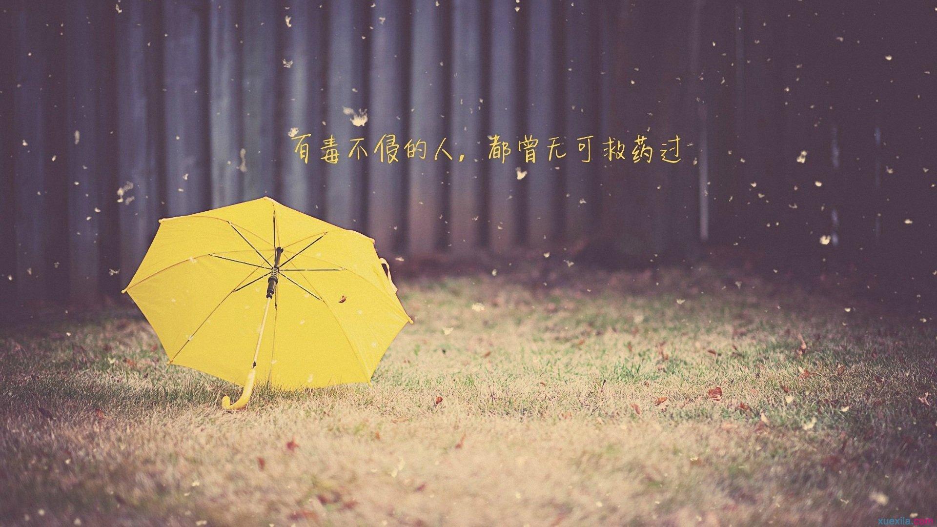 我们生在这风雨飘摇的浮沉乱世,什么都不能永久