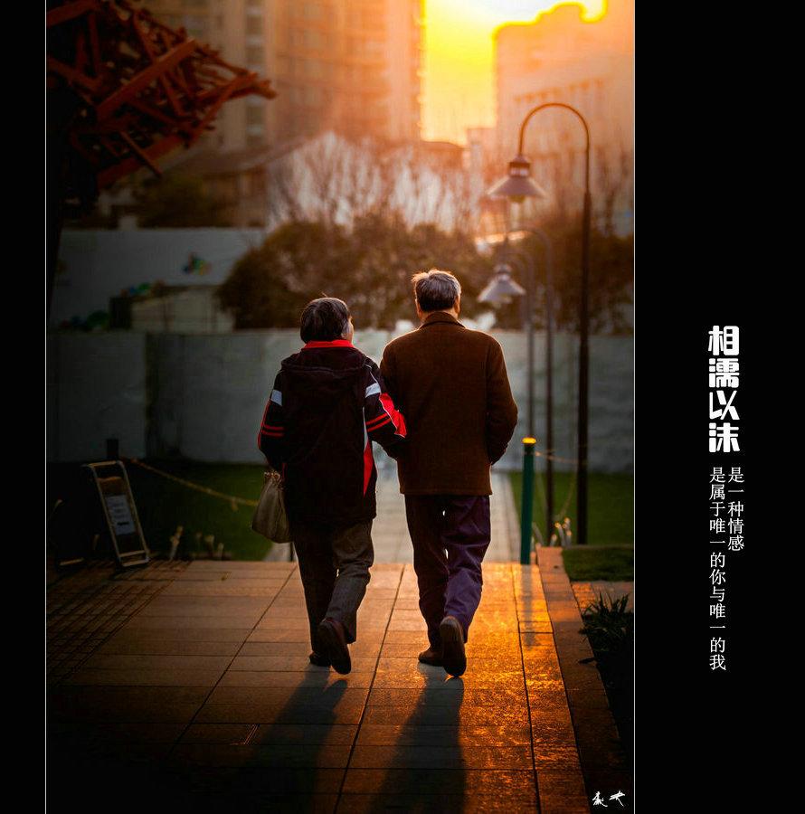 爱情,成就了岁月中的惊鸿,于世间演绎了多少悲欢离合,相濡以沫
