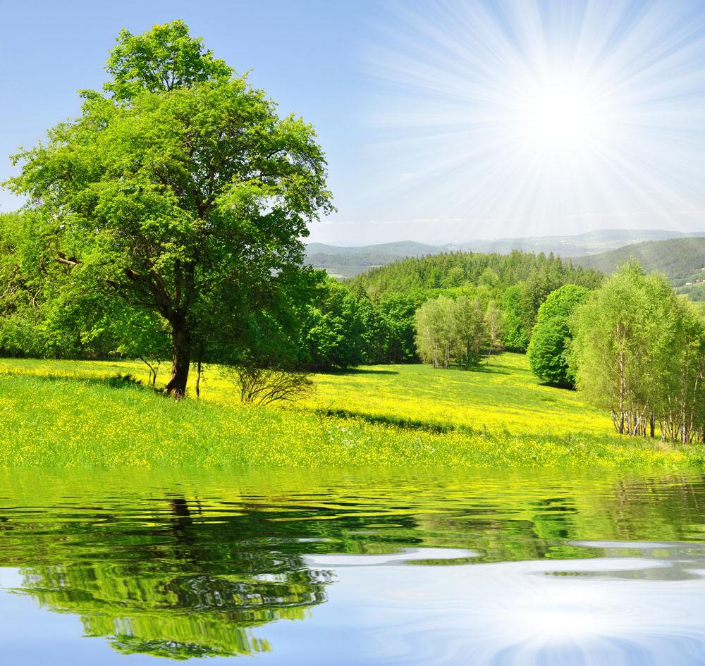 赞美春天的句子 描写春天的词语和句子