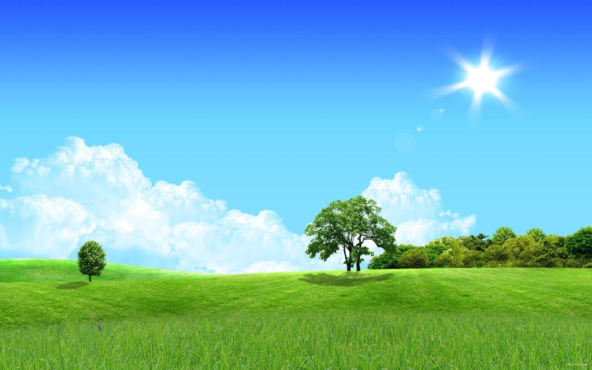 描写春天景色的句子 描写春天的诗句 春天来了写一段话