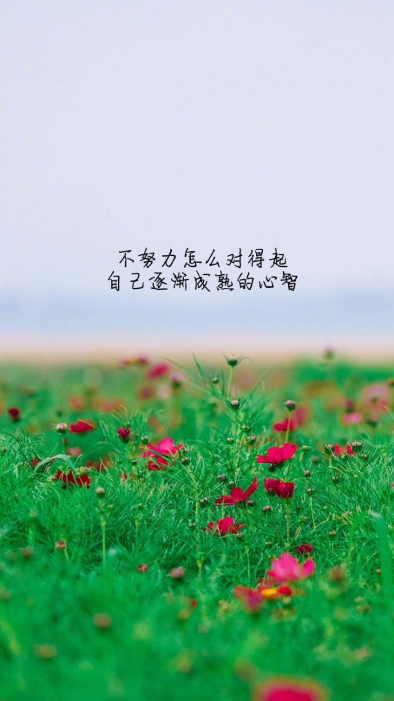 如果骄傲没被现实大海冷冷拍下,又怎会懂得,要多努力,才走得到远方。