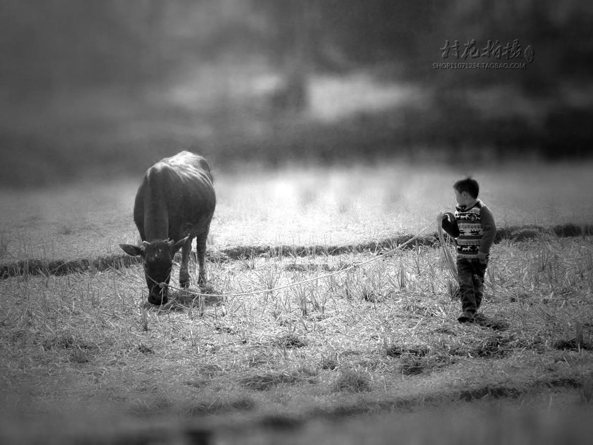 农村儿时的记忆图片